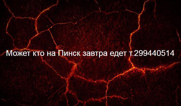20_2019-02-20.JPG