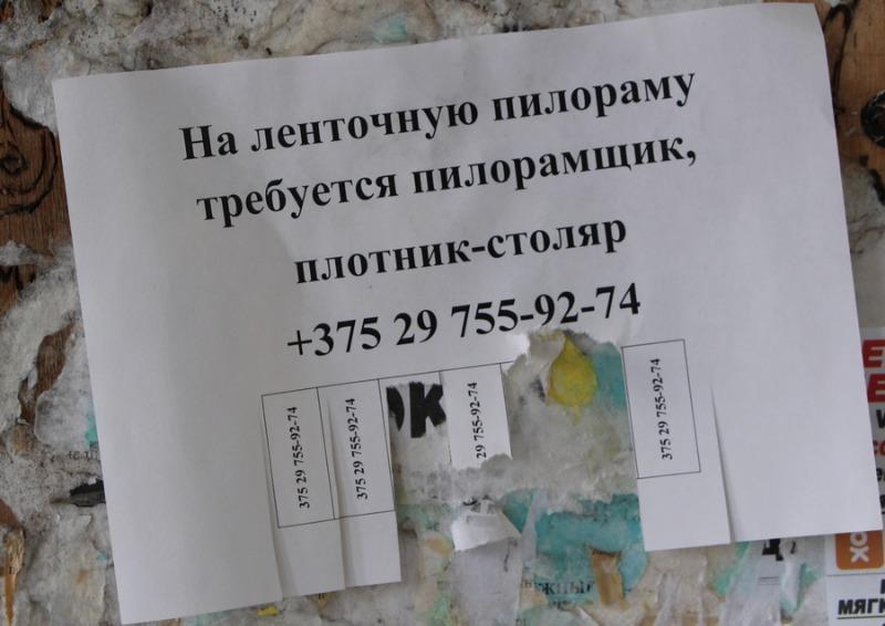 IMG_9938.JPG