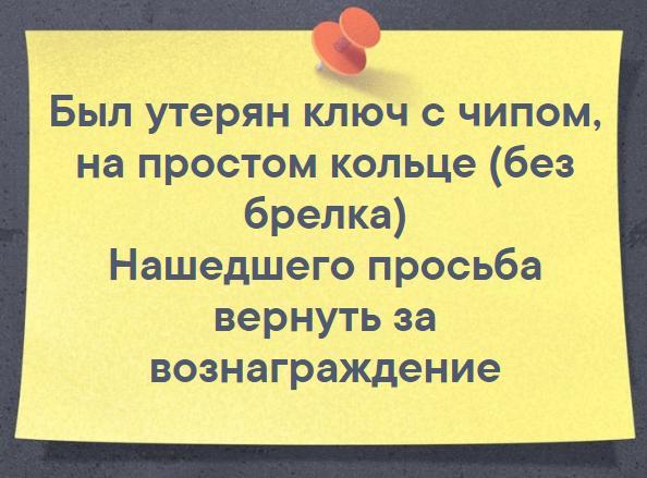file_2b765dd.JPG