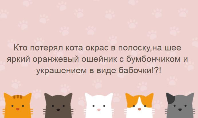 file_b0afa10.JPG